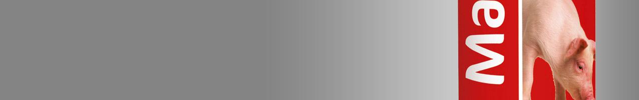 Markierung-Schwein592fc214bbd20