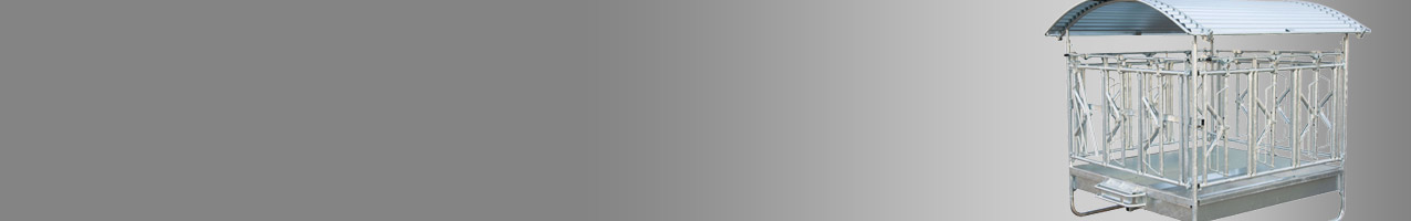 Heuraufe-Rinder59366b42616d5