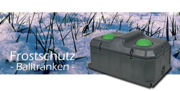 Frostschutz-Balltr-nken-Blog